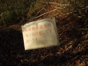 2010_vol5_081