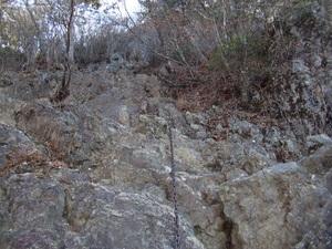2010_vol6_332