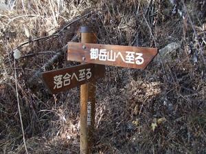 2010_vol7_181