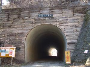 2010_vol7_198