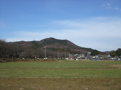 2010_vol8_565