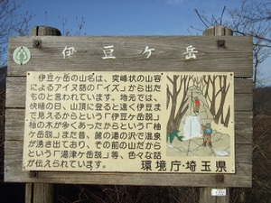 2011_vol1_244
