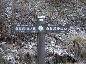2010_vol9_170