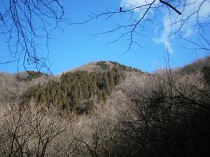 2011_vol2_372