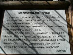 2011_vol3_305
