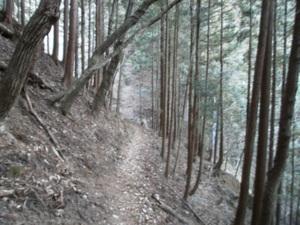 Futagoyama_20110126_015