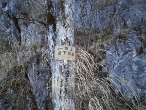 Futagoyama_20110126_085