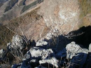 Futagoyama_20110126_103