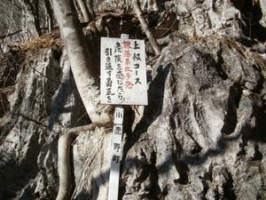 Futagoyama_20110126_167