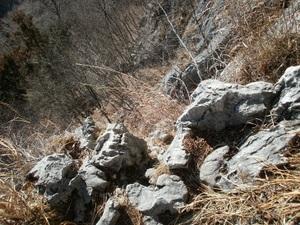 Futagoyama_20110126_186