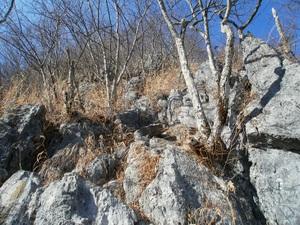 Futagoyama_20110126_188