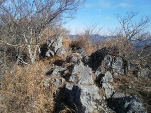 Futagoyama_20110126_197