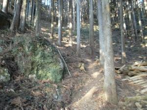 Kawanoriyama_20110128_014