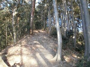 Kawanoriyama_20110128_020