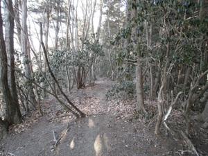 Kawanoriyama_20110128_093