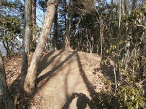 Kawanoriyama_20110128_095