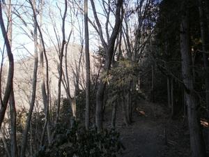 Kawanoriyama_20110128_110