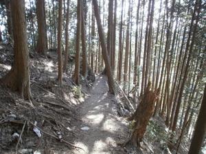 Kawanoriyama_20110128_230