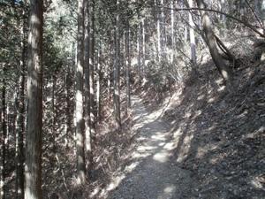 Kawanoriyama_20110128_245