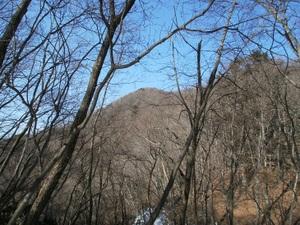 Kawanoriyama_20110128_254