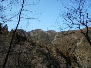 Kawanoriyama_20110128_344
