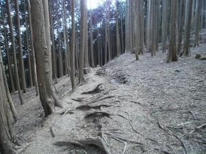 Kawanoriyama_20110128_352