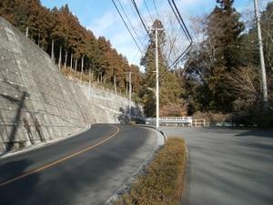 Takamizusanzan_20110202_035