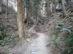 Takamizusanzan_20110202_085