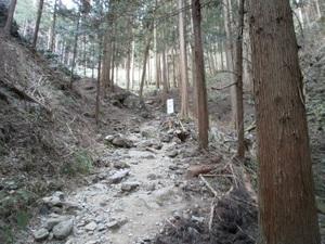 Takamizusanzan_20110202_092