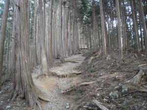 Takamizusanzan_20110202_108