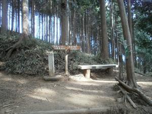 Takamizusanzan_20110202_121