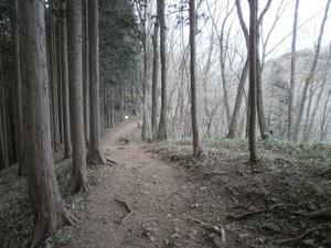 Takamizusanzan_20110202_174