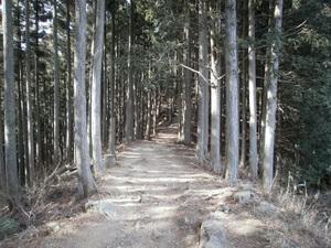 Takamizusanzan_20110202_186