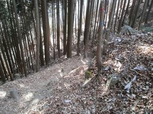 Takamizusanzan_20110202_260