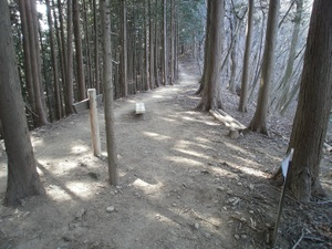 Takamizusanzan_20110202_268