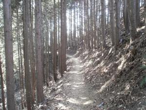Takamizusanzan_20110202_272