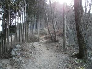 Takamizusanzan_20110202_293