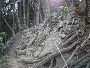 Takamizusanzan_20110202_300