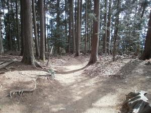 Takamizusanzan_20110202_320