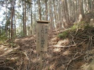 Takamizusanzan_20110202_335