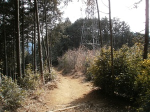 Takamizusanzan_20110202_346