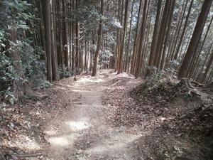 Takamizusanzan_20110202_358