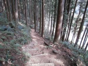 Takamizusanzan_20110202_371