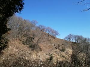Kanetsukidouyama_20110218_081