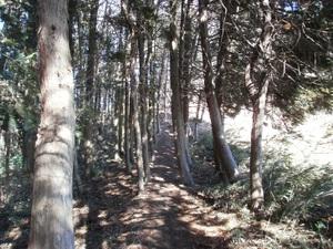 Kanetsukidouyama_20110218_085