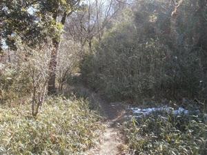 Kanetsukidouyama_20110218_164