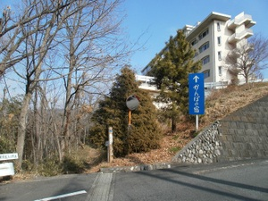 Jinmiyama_20110221_018