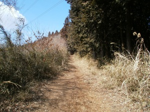 Jinmiyama_20110221_159