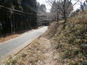 Jinmiyama_20110221_238