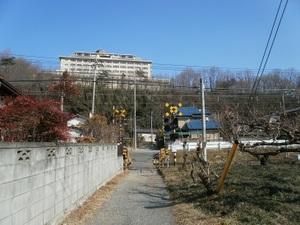 Jinmiyama_20110221_332